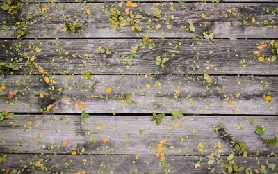 Spring Cleaning Checklist For Your Deck